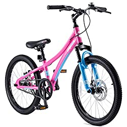 Best Mountain Bike for 10 year old boy