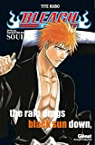 Bleach Data book - Souls