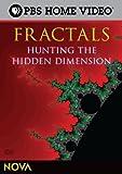 NOVA: Fractals - Hunting the Hid...