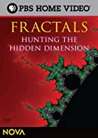 Nova: Fractals - Hunting the Hidden Dimension [DVD] [Import]