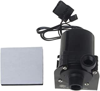 Lilongp SC800 SC600 - Bomba de agua (12 V, 10 W, CC,