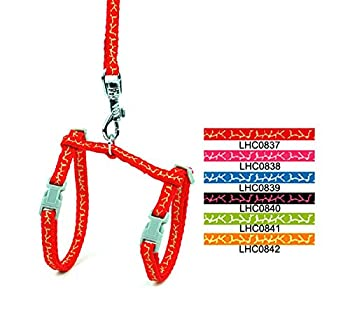 smalllee _ LUCKY _ storepet Lapin chat chaton collier harnais réglable durable Marche Laisse pour Girafe
