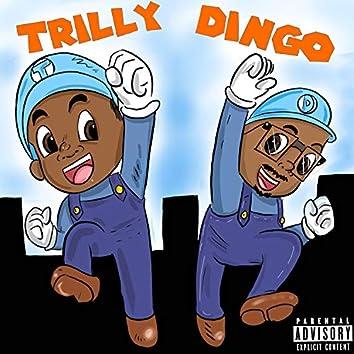 Trilly Dingo