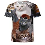 Foreign Trade Summer Trend Digital Printing A Lot of Cat Short-Sleeved T-Shirt Men