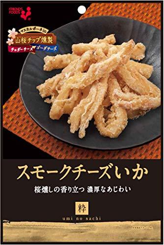 井上食品 スモークチーズいか 48g ×10袋