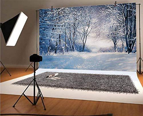 Fondo de vinilo para fotografía de invierno de 20 x 10 pies, callejón en bosque nevado, frío congelación, clima rural, naturaleza al aire libre, bosque, fondo para fotografía de fondo de estudio