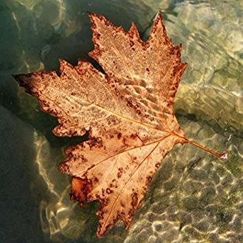 Sounds of Canadian Nature