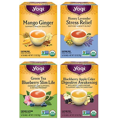 Yogi Tea - Iced Tea Variety Pack Sampler (4 Pack) - Mango Ginger, Green Tea Blueberry Slim Life, Blackberry Apple Cider Digestive Awakening, and Honey Lavender Stress Relief Teas - 64 Tea Bags