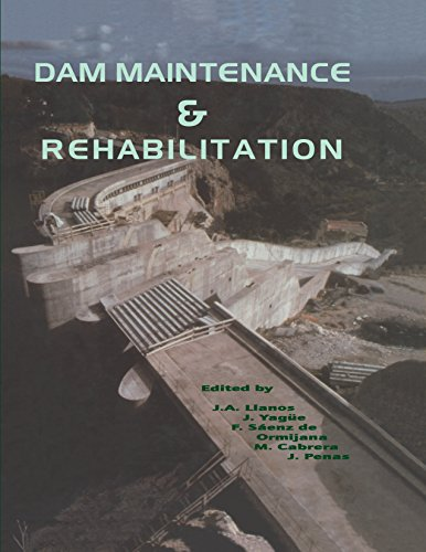 Dam Maintenance and Rehabilitation: Proceedings of the International Congress on Conservation and Rehabilitation of Dams, Madrid, 11-13 November 2002 (English Edition)