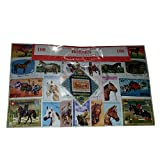 Horse Horses, Worldwide Stamps from Around The World, Collectable Set of 100 Postage Stamps! Souvenir / Speicher / Memoria! 100 Different Stamps! Timbre-Poste / Briefmarke / Francobollo / Sello de Correos!