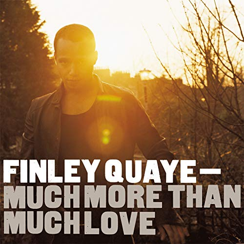 Much More Than Much Love [Vinyl LP]