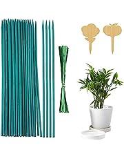 Shengruili Varillas de Bambú Verde,Estaca de Madera Verde para Plantas,Varillas de bambú Verde,Varillas de Soporte para Plantas de Flores (50)
