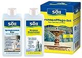 Söll 20181 Brunnen Pflege-Set, BrunnenDesinfektion & SpringbrunnenKlar je 250 ml - Brunnenreinigung Desinfektion Wasserpflege von Zierbrunnen Dekobrunnen Springbrunnen effektiv gegen Algen und Kalk
