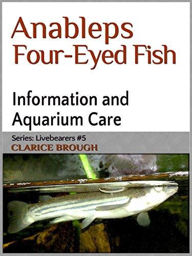 Four-Eyed Fish (Livebearing Fish Book 5) (English Edition)