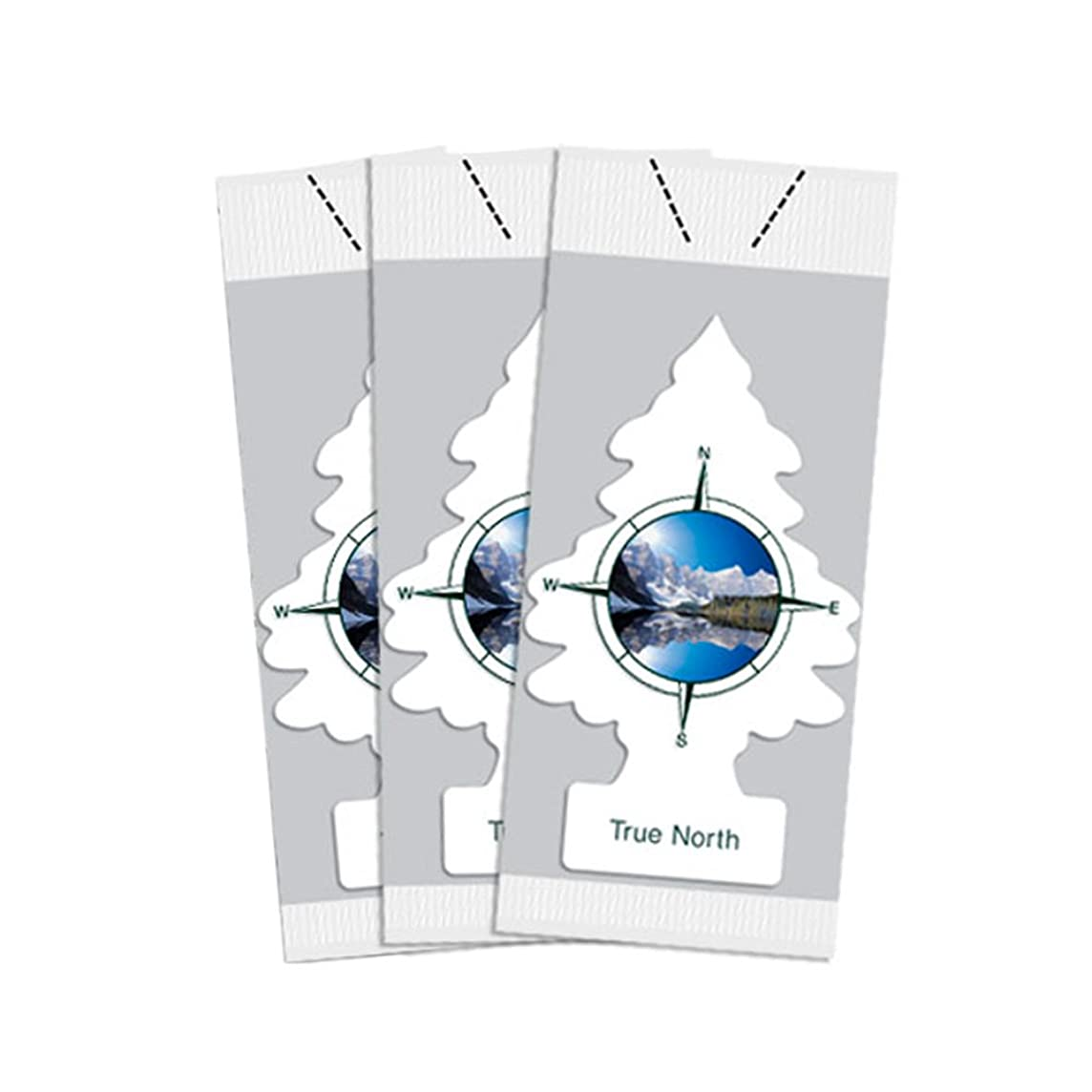 Little Trees Car Air Freshener 3-PACK (True North)