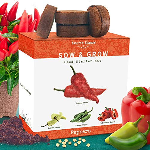 Natures Blossom Indoor Peppers Seed Starter Kit - Grow 4 Different Peppers from Seeds: Cayenne, Hot Jalapeno, Sweet Red Bell, Yellow Chilli Peppers.