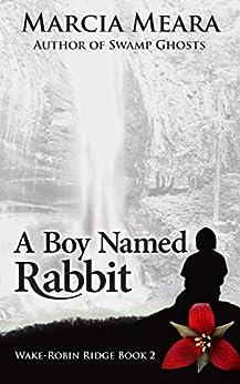 A Boy Named Rabbit: Wake-Robin Ridge Book 2 by [Marcia Meara]