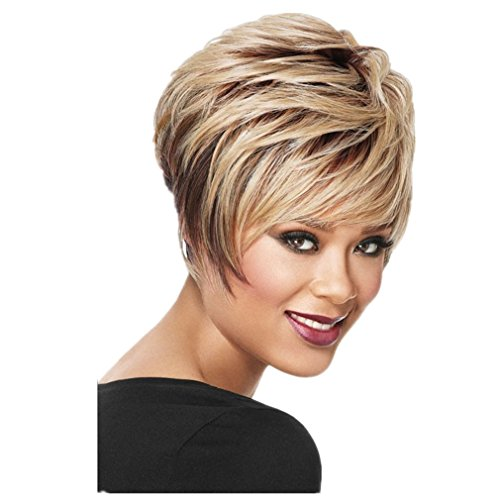 DINIFER Fashion Wigs Short Brown Blonde Curly Hair Wig (Sw06)
