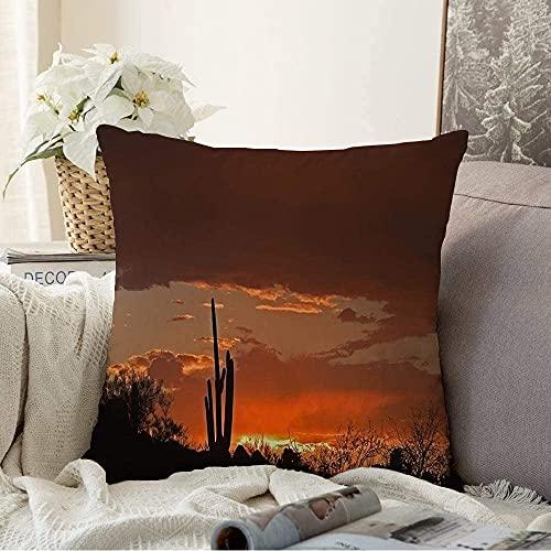 BONRI Kudde dekorativt torrt landskap kaktus sydvästra Saguaro silhuett solstad röd himmel naturparker utomhus naturlig kvadrat mysig kudde överdrag prydnadskudde fodral för soffa, 50 x 50 cm