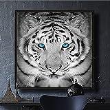 PGMZQHGF Tigre Blanco y Negro Moderno con Ojos Azules Pintura en Lienzo Hermosa decoración de Sala de Estar de Pared con Estampado de Animal Salvaje | 60x60cm Sin Marco