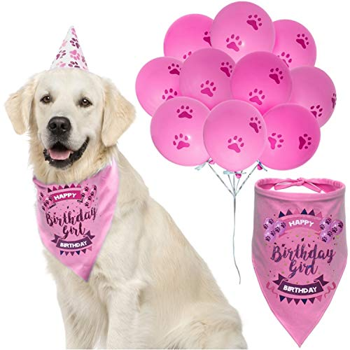 Dog Birthday Girl Bandana with Paw Print Party Cone Hat and 10 Balloons - Great Dog Birthday Outfit and Decoration Set - Perfect Dog or Puppy Birthday Gift