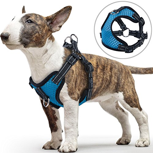 PETBABA Small Dog Harness, No Pull Vest with Front Clip Suitable Walk, Reflective Safety at Night, Soft Air Mesh Adjustable Step-in Harness - M in Blue
