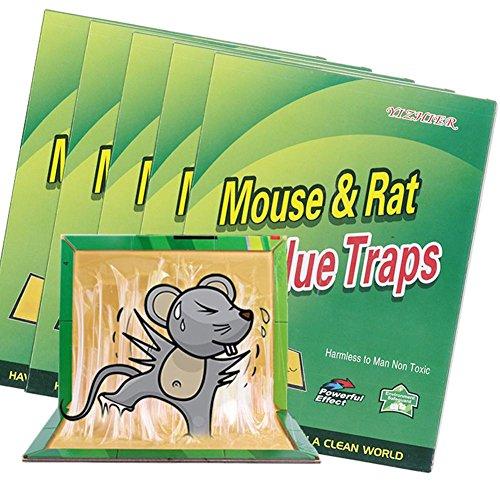 JAYLONG Piège à souris antiparasitaire Répulsif anti-Rat Sticky Board Sûr et respectueux de l'environnement non-toxique Sticky Mouse Board 100pcs pour jardin d'hôtel de cuisine
