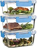 Exelcius® - Glass Containers - 3-pack Newly Innovated Hinged BPA-free Locking lids