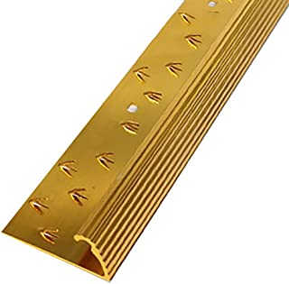 GWXFHT Building Products Carpet Blanking Strip Flat Strip Metal Edging Strip, Aluminum Alloy Door Edge Strip Metal Edge Strip U-Shaped Closing Strip (Color : Gold/2pcs)