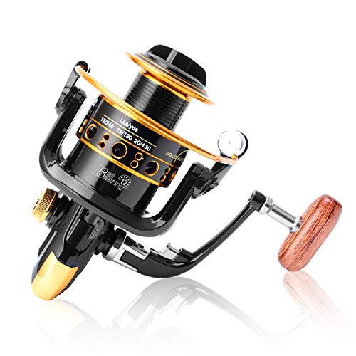 GOLD SHARKING Aluminum Spinning reels Light Weight for Saltwater Freshwater Ultra Smooth Powerful Spinning Fishing Reels12 Ball Bearings (HK, 1000)