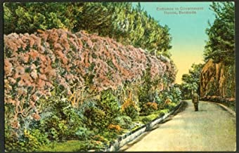 Entrance to Government House Bermuda postcard 1910s