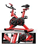 XIAOWEI Exercise Bike Indoor Fitness Cycling Bike Stationary Adjustable Professional Exercise Training Sport Bike of 330 Lbs Weight Capacity with LCD Monitor for Home Workout Musle Red