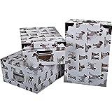 2J Caja de Almacenamiento de cartón Impreso para Perros Juego de 3 Cajas de Almacenamiento Impresas para Perros con ángulos y Asas de Metal. Tamaños: 38x26.5x14, 40x28.5x15, 42x30x16 cm