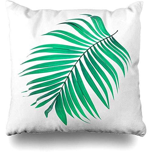 Mackinto Funda de Almohada Cuadrada 18x18 Arco de Coco Hojas Verdes Palmera en Blanco plumoso Naturaleza Curva Botánica Rama Arbusto Primer Plano
