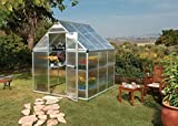Palram Mythos 6 x 8ft Silver Greenhouse