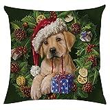 ✿Sarà consegnato entro 10-15 giorni. ✿Belle decorazioni renderanno la tua casa più calda e bella ✿Utilizzato per decorare il tuo bellissimo albero di Natale o in qualsiasi altro luogo della tua casa ✿Adatto per Natale e altri festival