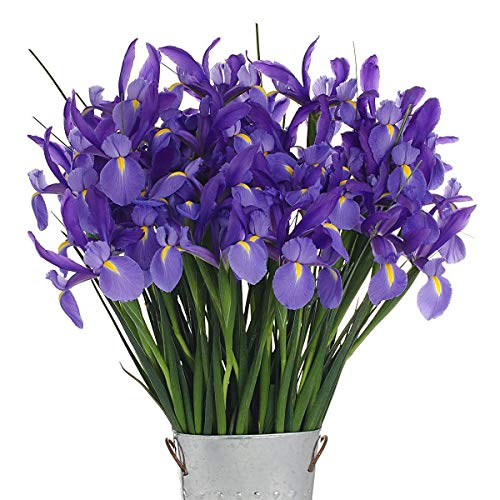 Stargazer Barn - Shine Bright Blue Telstar Iris Bouquet - Farm Fresh - Vase Included
