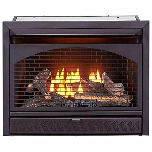 ProCom 29 Inch Vent-Free Dual Fuel Firebox Insert FBNSD28T Gas Fireplace, Large, Black