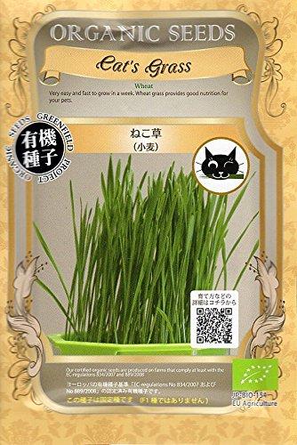 グリーンフィールドプロジェクト 有機種子 ねこ草 小麦