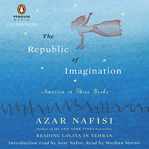 The Republic of Imagination audiobook cover art