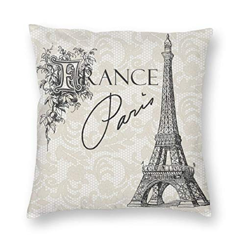 Meius - Funda de cojín con diseño de la Torre Eiffel vintage de París de Francia, terciopelo suave, decorativa, cuadrada, funda de almohada para salón, sofá o dormitorio, con cremallera invisible de 20 x 20 pulgadas