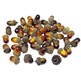 HONBAY 50PCS Lifelike Artificial Acorn Fake Nutty Craft Acorns with Acorn Cap Simulation Fruit Props for Vase Filler, Home House Autumn Favor, Thanksgiving Day Christmas and Wedding Decoration