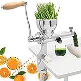 YFGQBCP EXTRANTOR DE JURICER DE Mantenimiento Manual EXCARTE DE Acero Inoxidable para JUGING HIERVO HIERVO COLIRY Kale Spinach PERSLEY