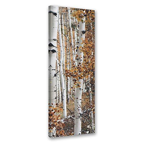 Feeby Vlies Leinwandbild Natur Baum 60x150 cm Wand Bild Kunstdruck Deko Wohnzimmer Wohnungs Deko Birkenwald Beige