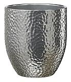 Soendgen Keramik Boston Metallic Jarrón para orquídeas, Plata, 13 x 13 x 14 cm
