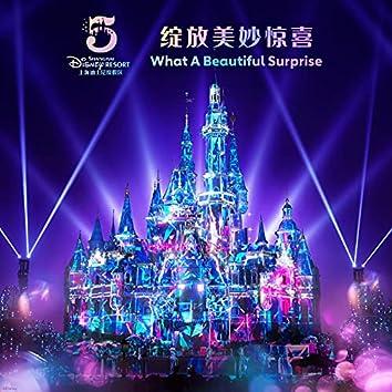 What A Beautiful Surprise (Shanghai Disney Resort 5th Anniversary Theme Song)