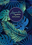 Agenda escolar 2019-2020: Planner Semanal - Semana Sista - Calendario - Horario - Prints Palm