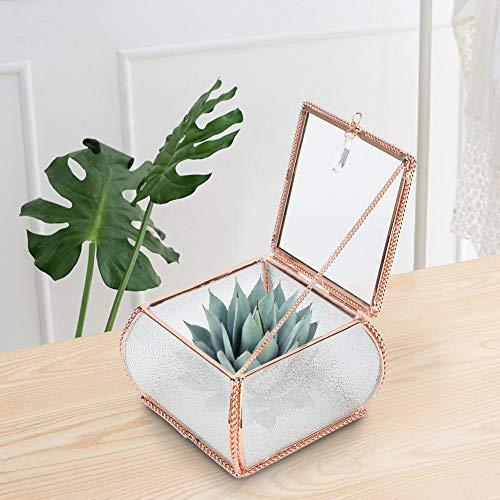 Terrario geométrico de vidrio, decoración de terrario de vidrio de mesa para el hogar, Contenedor de terrario de vidrio para plantas de aire suculentas (sin plantas)