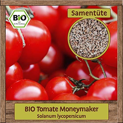 15 BIO Samen Tomaten-Samen Sorte Moneymaker-Samen Solanum lycopersicum Saatgut BIO Qualität DE-ÖKO-007 für ca. 10 Pflanzen