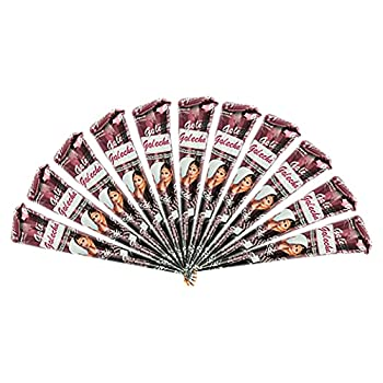 Golecha 12 Pack 100% Natural Ready to Use Henna Paste Hair Color Hair Dye Cones